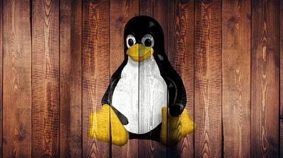 Linux server distributions: Ubuntu, CentOS, Debian, OpenSUSE, Fedora